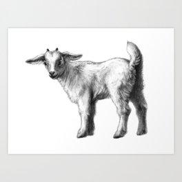 Goat baby G147 Art Print