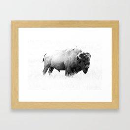 Bison - Monochrome Framed Art Print