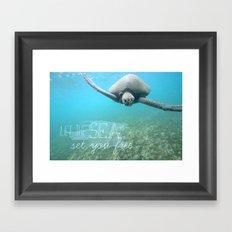 Free Turtle  Framed Art Print