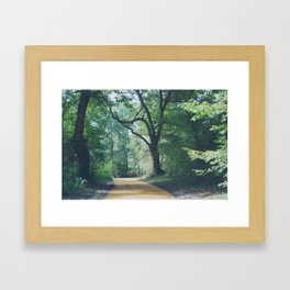Les Landes (4) Framed Art Print