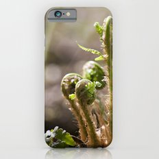 Young Ferns Slim Case iPhone 6s