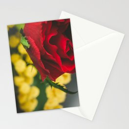 Roses and mimosas Stationery Cards