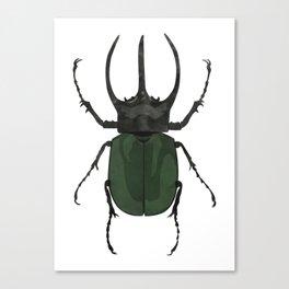Atlas Beetle Insect Digital Watercolor Canvas Print
