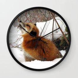 Fox Floof Wall Clock