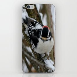 Snowy Downy iPhone Skin