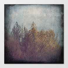 8854 Canvas Print
