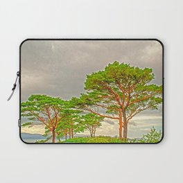 Magestic old Trees Laptop Sleeve