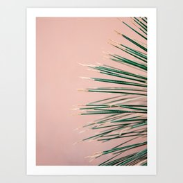 Green on Coral | Botanical modern photography print | Tropical vibe art Art Print