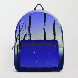 Cattail Lake Backpack