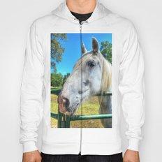 Horsey!  Hoody