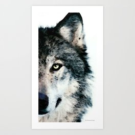 Wolf Art - Timber by Sharon Cummings Art Print