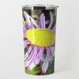 Close Up of A Violet Aster Flower Spring Bloom  Travel Mug
