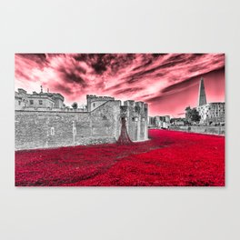Poppies At The Tower - the very sky weeps Canvas Print