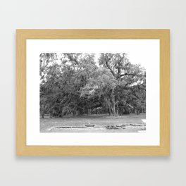 Mossy Oak Framed Art Print