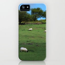 Field of Irish Sheep iPhone Case
