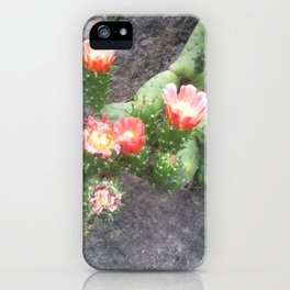 A cactus in its bloom iPhone Case