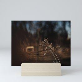 Rustic | Nature and Landscape Photography Mini Art Print