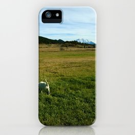Mount Sopris and Puppies - Glenwood Springs, CO iPhone Case