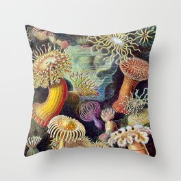 Anemones by Haeckel (Sea Plants and Flowers) Throw Pillow