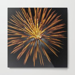 Pyrotechnics Thirty Eight Metal Print