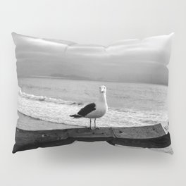 What are you looking at? Pillow Sham