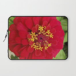 Red, RED Zinnia Laptop Sleeve