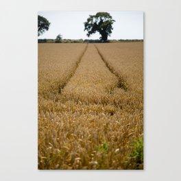 Tramlines in a wheat field Canvas Print