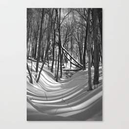 Falling Shadows Canvas Print
