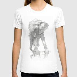African Elephant, Loxodonta Africana T-shirt