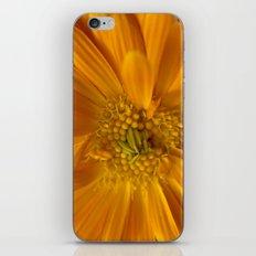 Orange Flower iPhone Skin