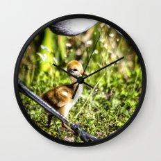 Watchful Eye Wall Clock