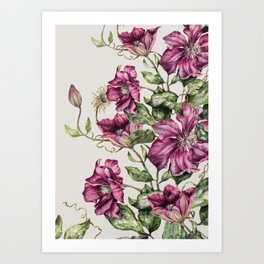 Purple Flowers 3 Art Print