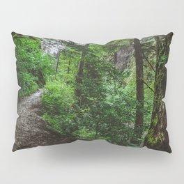 Trailblazing Pillow Sham