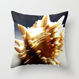 Sleeping Seashell Deux Throw Pillow