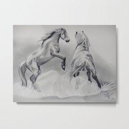 Stallions Metal Print