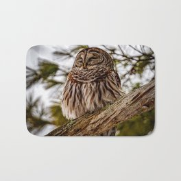 Barred owl perched in the treetops off the Otsego lake coast in Cooperstown, New York Bath Mat