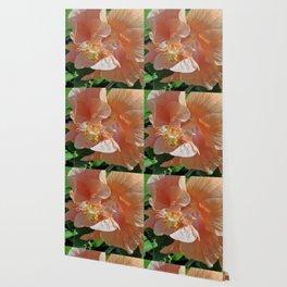 Peach godess Wallpaper