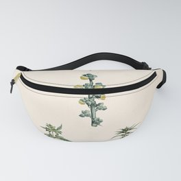 prune, pomme Redoute Roses 3 Fanny Pack