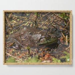 Bullfrog Serving Tray