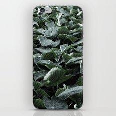 Flora Azores iPhone & iPod Skin