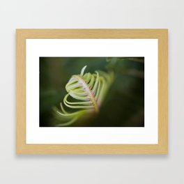Furl Framed Art Print