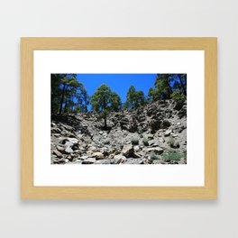 View of a rocky hillside in the Canary Islands Framed Art Print