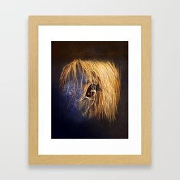 Golden Eye Framed Art Print