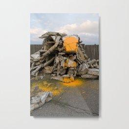 tigerstein Metal Print