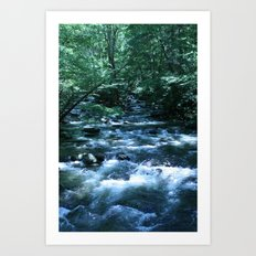 A Fork in the River (color) portrait Art Print