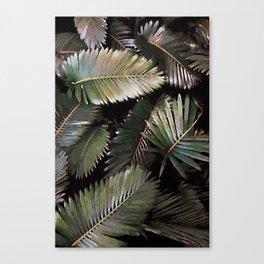 Dark Palm Leaves Canvas Print