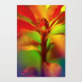 AZ Buds Canvas Print