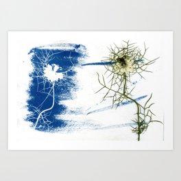 Solar Herbalism #1 Art Print