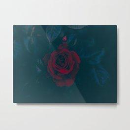 Rose In Darkness Metal Print