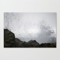 Get Wet Canvas Print